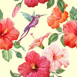 Watercolor tropical hibiscus pattern Stock Photos