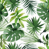 Watercolor tropical leaves seamless Royalty Free Stock Photo