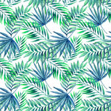 Watercolor tropical leaves seamless pattern Stock Photos