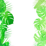 Watercolor tropical leaves. Vector illustration of Watercolor tropical leaves Royalty Free Stock Photos