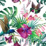 Watercolor tropical narute seamless pattern Stock Photos