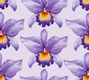 Watercolor tropical orchid flower seamless pattern. Royalty Free Stock Images