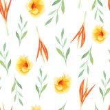 Watercolor tropical painting of leaf and flowers, seamless pattern on white background stock illustration