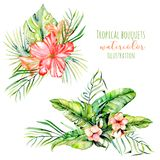 Watercolor tropical palm leaves and flowers exotic bouquets Royalty Free Stock Images