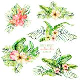 Watercolor tropical palm leaves and flowers exotic bouquets. Hand painted isolated on a white background vector illustration