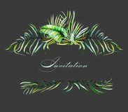 Watercolor tropical palm leaves frame border, festive invitation postcard. Watercolor tropical palm leaves frame border, hand painted on a dark background Royalty Free Stock Image