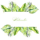 Watercolor tropical palm leaves frame border, hand painted on a white background. Greeting card, festive design postcard Royalty Free Stock Photography