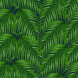 Watercolor tropical palm leaves seamless pattern Stock Photo