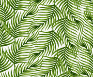 Watercolor tropical palm leaves seamless pattern Stock Image