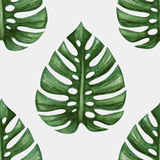 Watercolor tropical palm leaves seamless pattern stock illustration