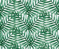 Watercolor tropical palm leaves seamless pattern Stock Images