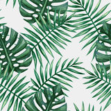 Watercolor tropical palm leaves seamless pattern. Stock Images