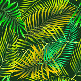 Watercolor tropical palm leaves seamless pattern. Royalty Free Stock Image