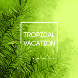 Watercolor  tropical palm tree leaf background. Tropical vacation design. Vector illustration Royalty Free Stock Image