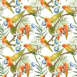 Watercolor tropical parrots pattern stock illustration