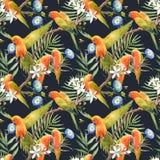 Watercolor tropical parrots pattern vector illustration