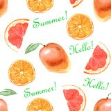 Watercolor tropical pattern with orange on a white background royalty free illustration