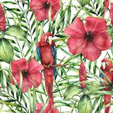 Watercolor tropical pattern with parrot. Hand painted hibiskus with palm leaves isolated on white background. Botanical vector illustration