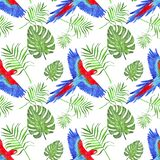 Watercolor tropical pattern parrot macaw leaves monstera and palm royalty free illustration