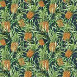 Watercolor tropical pattern with raw pineapple. Hand painted tropical fruit with palm leaves isolated on dark blue Stock Photos