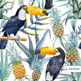 Watercolor, Tropical, Pineapple, Exotic, Pattern Stock Photography