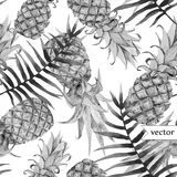 Watercolor, tropical, pineapple, exotic, pattern Stock Images