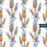 Watercolor, tropical, pineapple, exotic, pattern Royalty Free Stock Photo