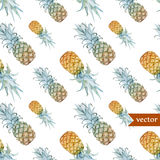 Watercolor, tropical, pineapple, exotic, pattern Royalty Free Stock Photography
