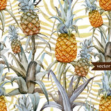 Watercolor, tropical, pineapple, exotic, pattern Stock Image