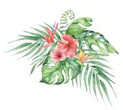 Watercolor tropical plants bouquet. Exotic flowers and leaves,