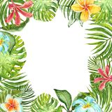 Watercolor tropical plants frame with green exotic plants, leaves and flowers. Summer border design