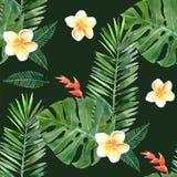 Watercolor tropical plants seamless Stock Photos