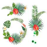 Watercolor tropical plants for your designs Royalty Free Stock Photos