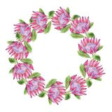 Watercolor Tropical Protea Wreath. Wedding invitation with leaves, protea flowers