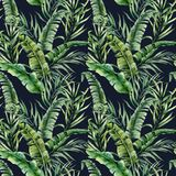 Watercolor tropical seamless pattern with banana and coconut palm leaves. Hand painted greenery exotic branch on dark vector illustration