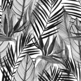 Watercolor tropical seamless pattern with bird-of-paradise flower, palm leaves in black and white colors vector illustration