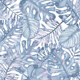 Watercolor tropical seamless pattern hand painted with leaves of indigo palm monstera Royalty Free Stock Photo
