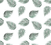 Watercolor tropical seamless pattern palm leaves Royalty Free Stock Photo