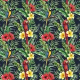 Watercolor tropical seamless pattern with parrot and tropical leaves. Hand painted flowers and palm branch on dark blue stock illustration