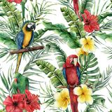 Watercolor tropical seamless pattern with tropical leaves and parrot. Hand painted flowers and palm branch on white vector illustration