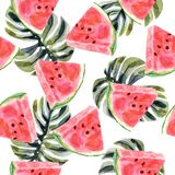 Watercolor tropical seamless pattern with watermelon on a white background stock illustration