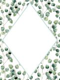 Watercolor tropical vertical frame with silver dollar eucalyptus leaves. Hand painted floral illustration with branch Royalty Free Stock Image
