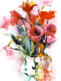 Watercolor tulips flowers bouquet. Watercolor illustration of a beautiful bouquet of red and pink tulips Royalty Free Stock Images