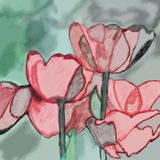 Watercolor tulip flower illustration Stock Photo