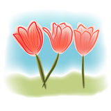 Watercolor tulips. Watercolor style illustration of tulips in field Royalty Free Stock Photography