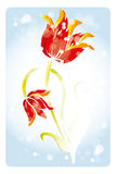 Watercolor tulips. Hand drawn watercolor tulips with bokeh - botany art illustration stock illustration