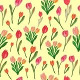 Watercolor tulips seamless floral pattern royalty free illustration