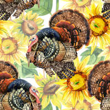 Watercolor turkey with sunflowers seamless pattern on the white background Stock Photo