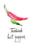 Watercolor turkish hot pepper Royalty Free Stock Image