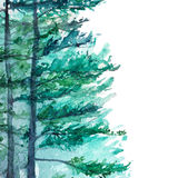Watercolor turquoise winter wood forest pine landscape.  Royalty Free Stock Photos